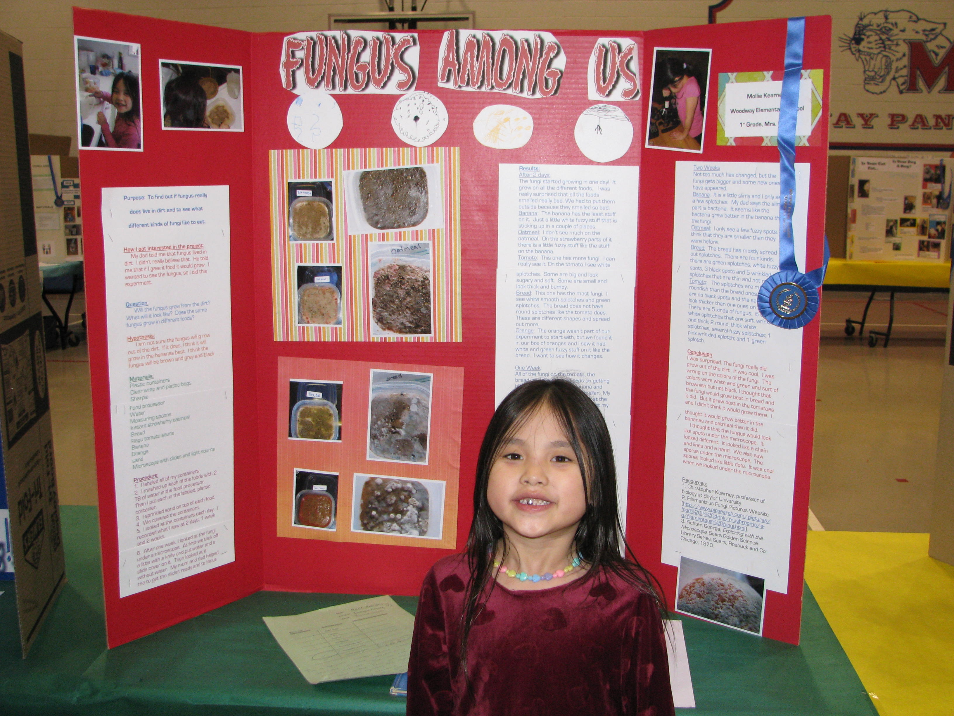 Science fair information blessedmomof5 39 s weblog for Do my project