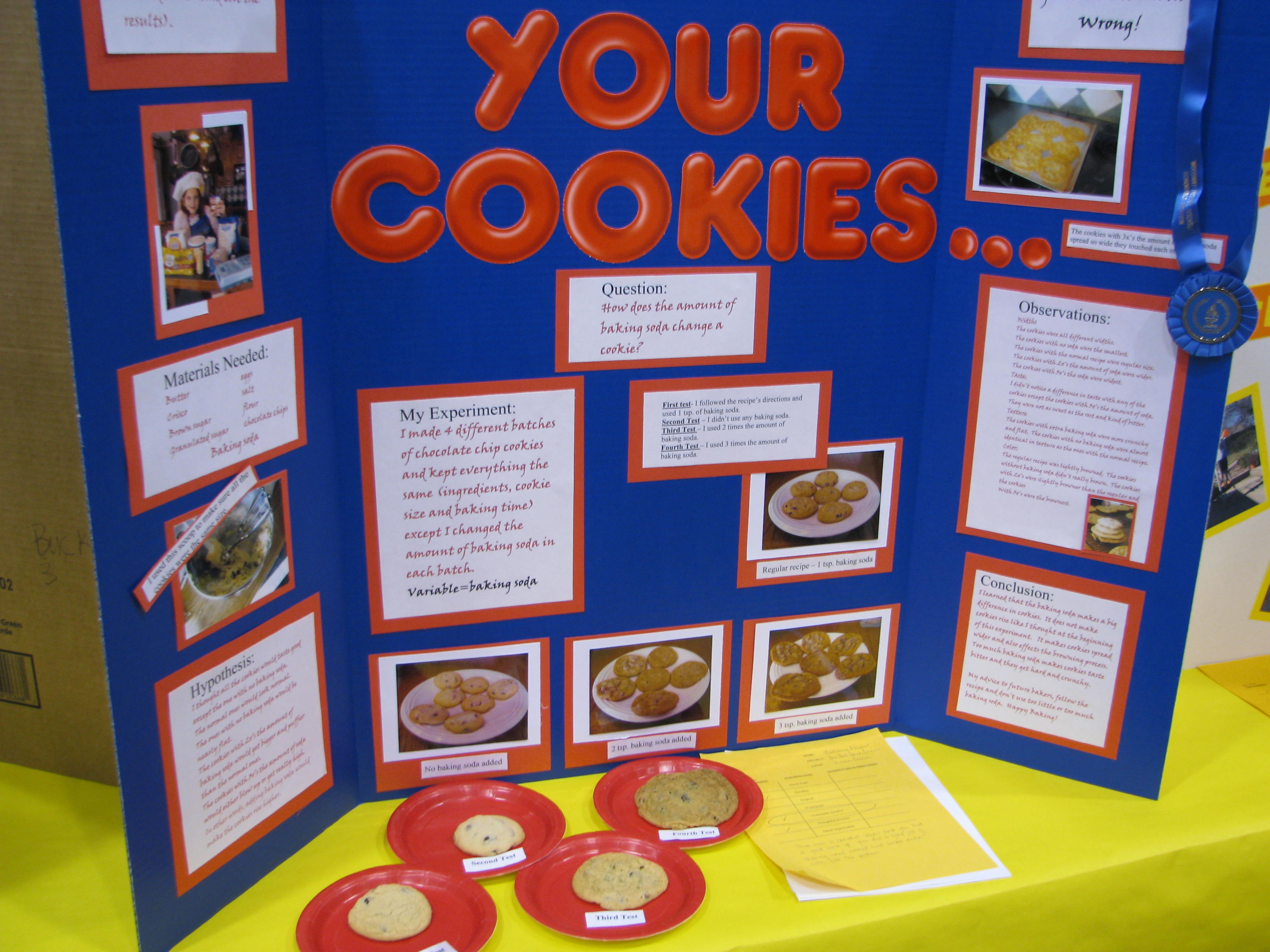Cool science fair projects for 8th graders